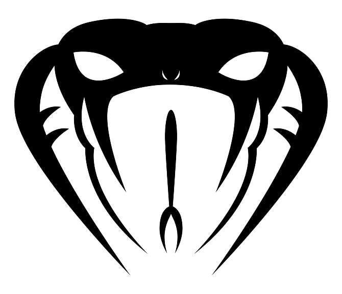 Logo amp Motif Design Irarmadilloboy